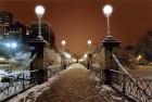 Public Garden Bridge